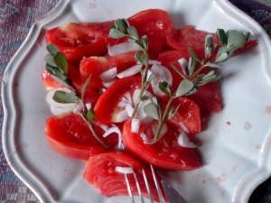salade tomates, pourpier, oignon blanc.